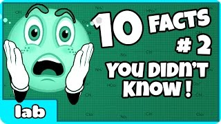 10 Facts I Bet You Didn't Know By HooplakidzLab #2