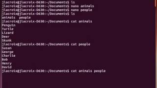 Tutorial Linux Commands for Beginners  The cat Command Open Source
