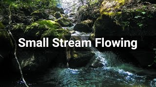 Small Stream Flowing • Water • Sounds Effects (No Copyright Sounds)