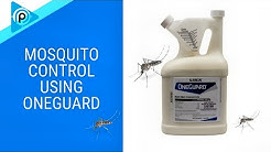 Mosquito Control using OneGuard (episode 84)
