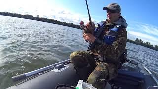 Калининградский залив КМК рыбалка