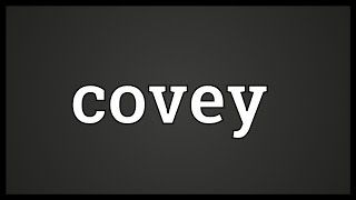 Covey Meaning