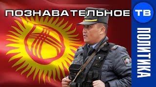 Киргизская революция. Почему киргизы круче белорусов? (Артём Войтенков)