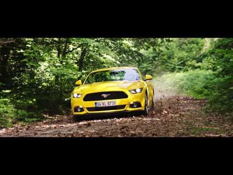 Bir Araba İki Şampiyon