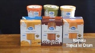 Magnolia Tropical Ice Cream