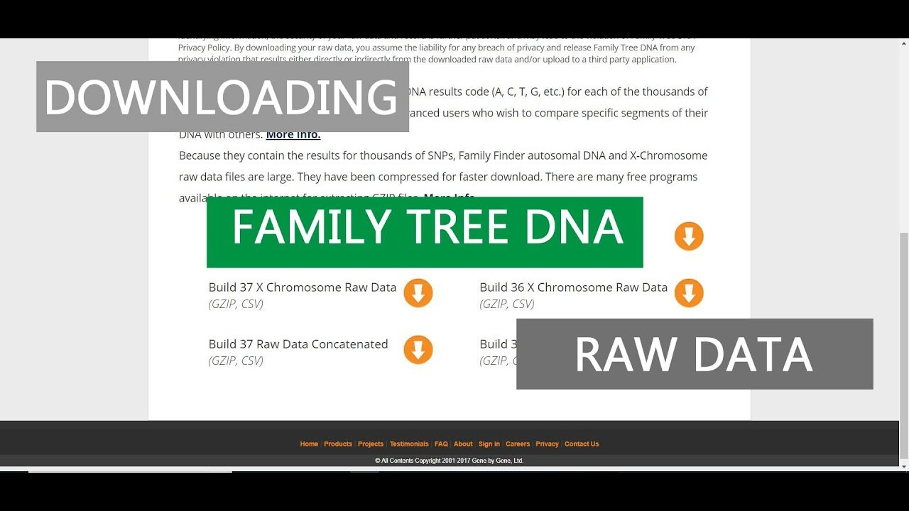 downloading family tree dna raw data youtube