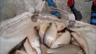 Все о рыбалке в Ейске. Часть 6. Рыбалка по перволедью.  Ейский лиман..