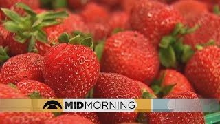Strawberries Again At #1 On List Of Pesticide-Contaminated Foods