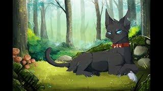 Коты Воители - Бич
