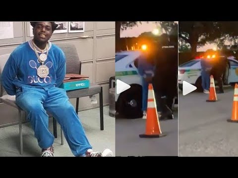 Young Scholar - KODAK ARRESTED AT ROLLING LOUD