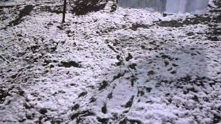 Весна в зимней шубе 12 03 2015