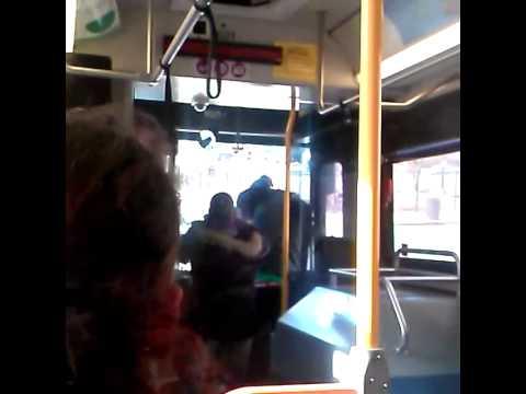 Bus fight Springfield mass
