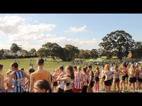 NSW State XC Relays