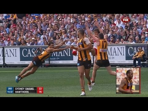 2014 AFL Grand Final - Hawthorn Vs Sydney (ABC commentary)