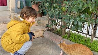 Fatih Selim tatlı bir sokak kedisi için kasaptan et aldı.Bahçede horoz ötüyor onu izledik.
