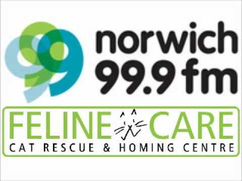 Feline Care on Brains of Norwich on Norwich 99.9fm