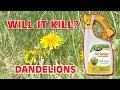 Scotts Liquid Turf Builder & Weed Control - Will it Kill Dandelions?