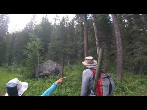 2016 Yellowstone Slough Creek July