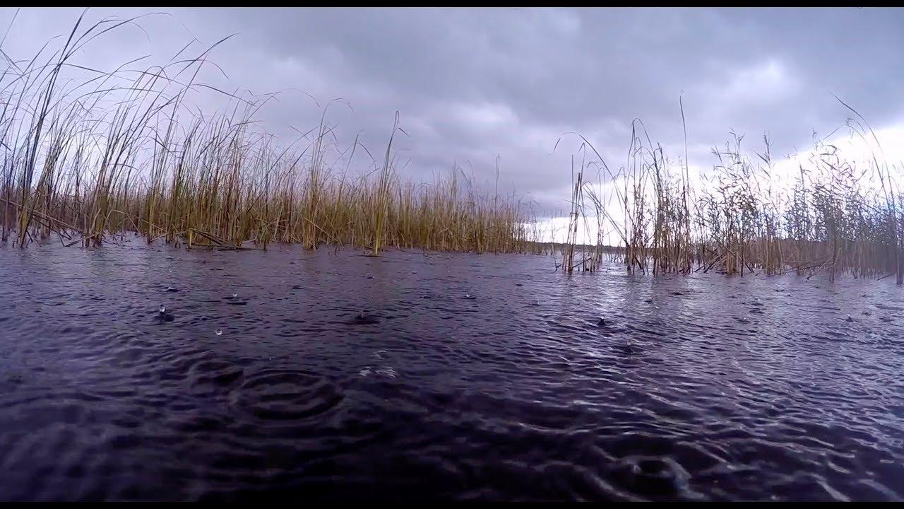 Осенняя Подводная Охота. Очень много Щуки. Озеро Saadjärv. Красота под водой.