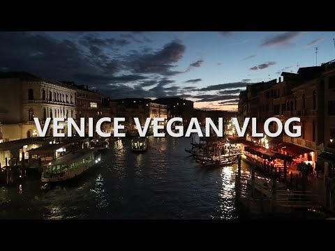 Venice Travel Vlog  // Doge's Palace // St Mark's Cathedral // Grand Canal