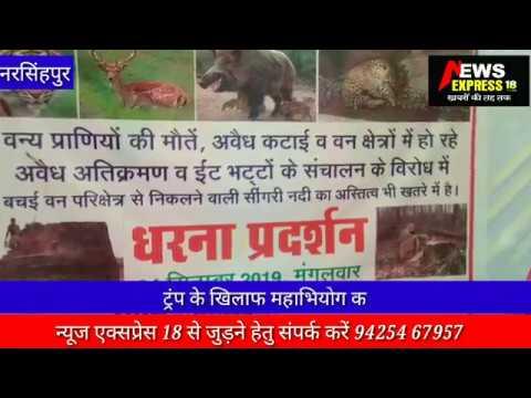 वनों को बचाने नरसिहपुर डीएफओ के सामने नाचे शेर, दिया ज्ञापन