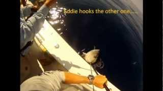 Tuna Fishing Venice, La  With Capt. Eddie Burger