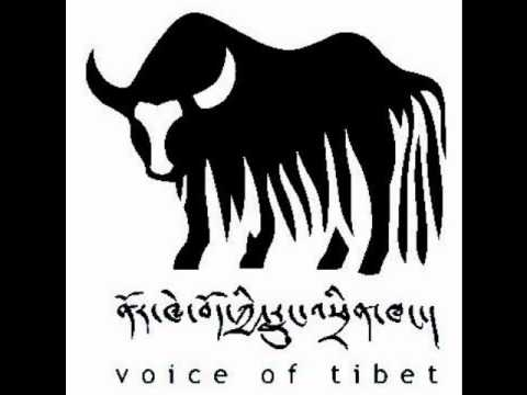 Voice of Tibet coverage on Jamphel Yeshi Scholarship