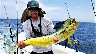 Catching some INSANELY Colored Fish (Mahi Mahi, Tuna, Yellowtail)