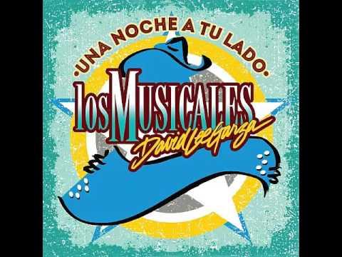 David Lee Garza Y Los Musicales - El Privilegio