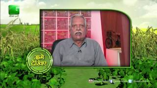 different types of seeds for rabi season crops in baatein kheti kion green tv
