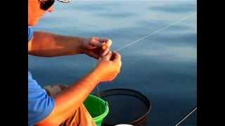 Рыбалка ночью: ловим Леща.