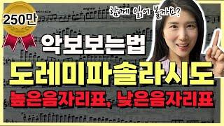 [악보보는법]도레미파솔라시도♬ 함께읽어요! 높은음자리표 낮은음자리표 설명ㅣ앨리스