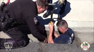 Boise Police and Boise Fire rescue ducklings from storm drain!