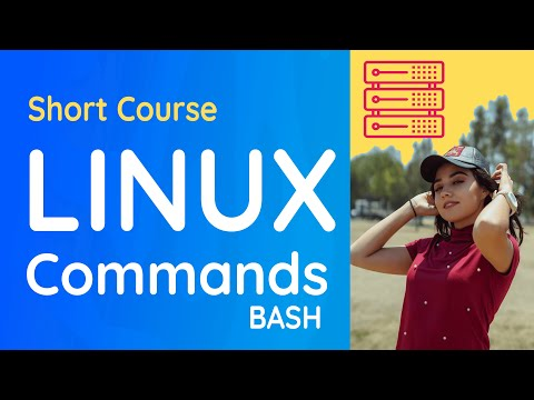 Linux Command Line and Bash with Cygwin: File Systems