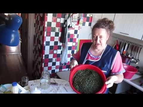 Как собирать и сушить иван-чай - как ферментировать