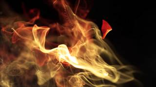Meywenz - Start The Riot [NFG005] Music Video !