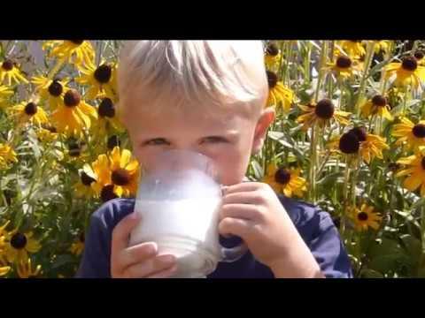 Изображение предпросмотра прочтения – ИльяФаддеев читает произведение «Цветное молоко» (Орлов Владимир)