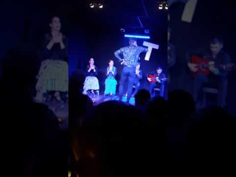 Flamenco Shows -Madrid(1)