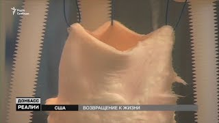 Новые органы для военных   «Донбасc Реалии»