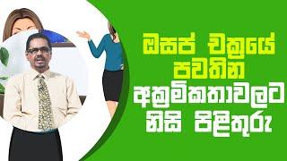 ඔසප් චක්රයේ පවතින අක්රමිකතාවලට නිසි පිළිතුරු   Piyum Vila   17 - 05 - 2021   SiyathaTV Thumbnail