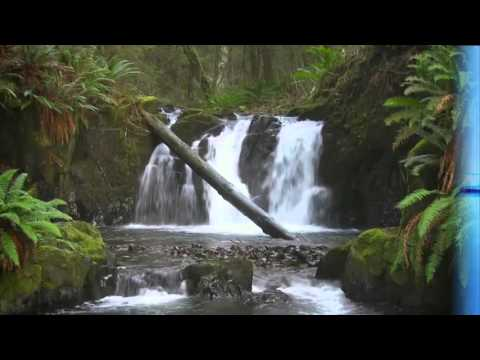A Short Film on Our Natural Resources
