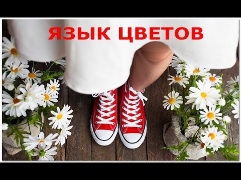 Цветы имеют особый язык, посмотрим, что они скажут