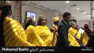 محمد بشير - يا حمامه - حفل جديد 2019