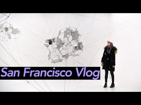 San Francisco Travel Vlog📍