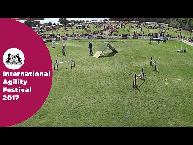 Kennel Club Novice Cup - Large Semi Final - Part 2 | International Agility Festival 2017