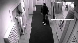 Лифт убил пса