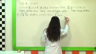 Japonca İleri Düzey