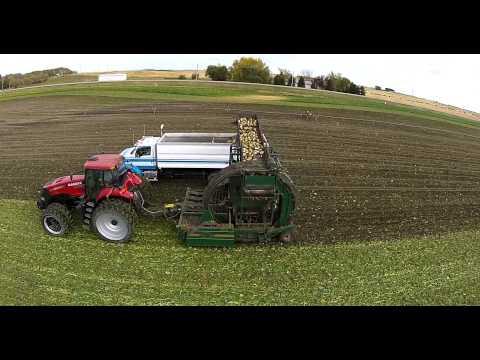 M&R Beet Harvest 2014