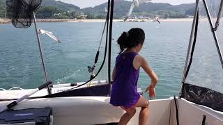 아미니)갈매기먹이주기.배타고떠나요. 서해섬여행.아민호.…