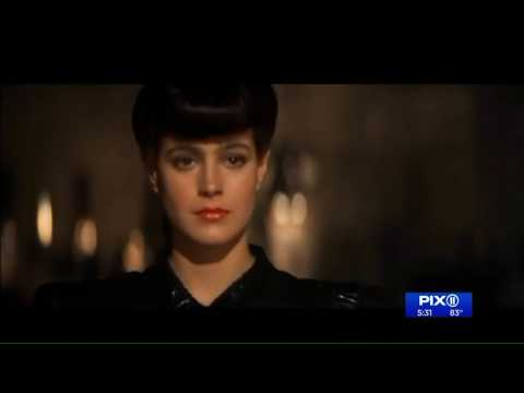 Actress Sean Young wanted for questioning in Queens burglary: sources